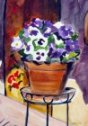 Pansies on Stand